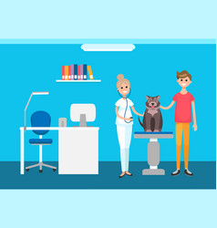 veterinarian veterinary checkup at pet clinic vector image