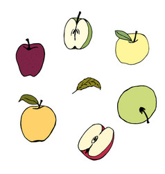 set apple colors hand vector image vector image