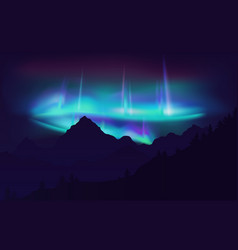 Beautiful aurora borealis northern lights in night vector