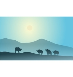 Bull silhouette in mountain scenery vector