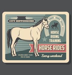 Equestrian sport horse riding hippodrome vector