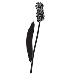 Flower silhouette real vector