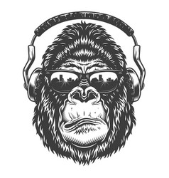 Head of gorilla vector