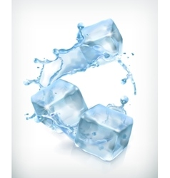 Ice cubes and a splash of water vector image