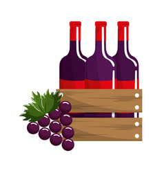 bottles of wine and grape fruit tasty vector image