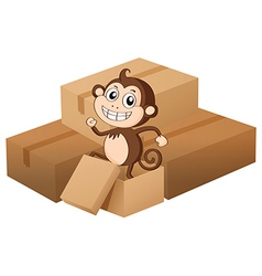 Monkey and boxes vector image