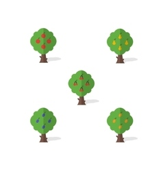 Set of garden trees in the flat design vector image