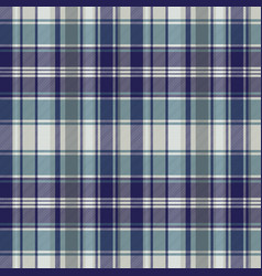 blue striped tartan plaid seamless pattern vector image