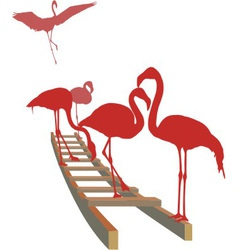 Flamingos on the ladder vector