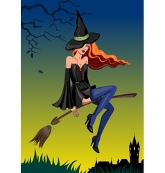Halloween witch with a broom vector