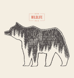 silhouette wild bear forest wildlife drawn vector image