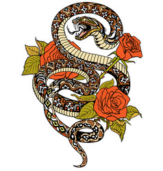 Snake and roses tattoo vector