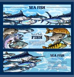 fresh fish seafood restaurant sketch banner set vector image vector image
