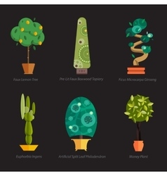 Set of indoor tree home plants in pots vector image