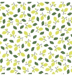 Seamless pattern with lemons on the white vector image vector image