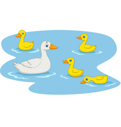 duck family swimming in the pond vector image