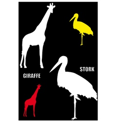 Giraffe and stork vector image