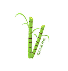 Logo icon design sugarcane farm vector
