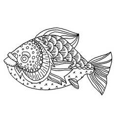 Richly decorated fish hand drawing vector
