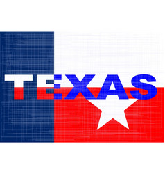state of texas grunge background vector image