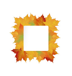 big autumn sale design vector image vector image