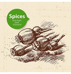 Kitchen herbs and spices vintage background with vector