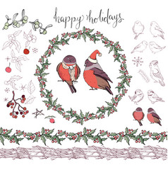 collection of different winter birds christmas vector image