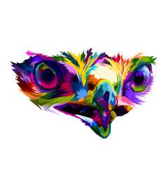 colorful eyes of eagle very close up isolated vector image