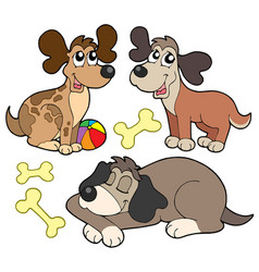 Cute dogs collection vector