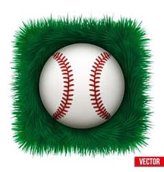 Icon Baseball ball in green grass vector image