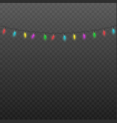 realistic isolated fairy lights string for vector image
