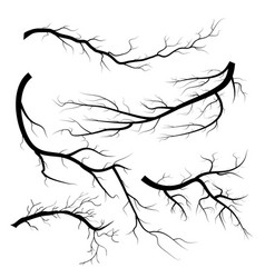 Set of dry twigs on white background trees vector
