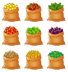 Set of fresh vegetables in sack vector