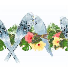 Tropical border seamless background blue pet vector