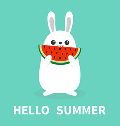 White bunny rabbit holding eating watermelon vector