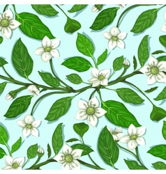 White Flowers on Twig Seamless Pattern vector image