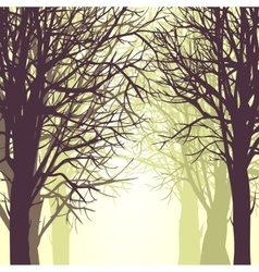 background with trees vector image