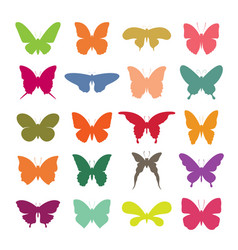group of colorful butterfly on white background vector image