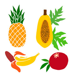 A set painted fruits pineapple pomegranate vector