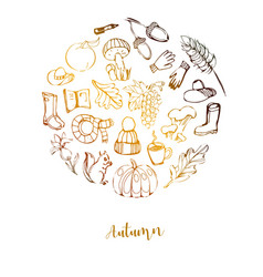 autumn gold circle line hand drawn set of vector image