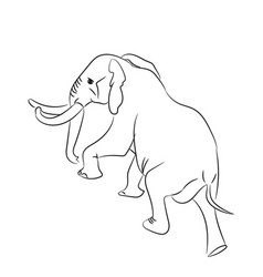 elephant graphic line goes vector image