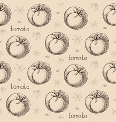 hand drawn pattern of fresh juicy tomato vector image