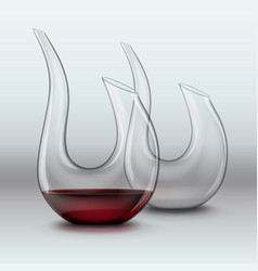 two graceful decanters vector image