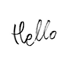 hello modern brush calligraphy vector image