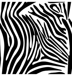 Zebra Stripes Seamless Pattern vector image