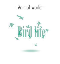 animal world bird life flying birds background vec vector image