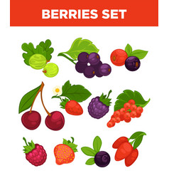 berries isolated icons set vector image vector image