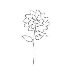 One single line drawing beauty aster flower vector