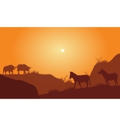 Silhouette of bison silhouette in hills vector image