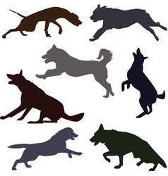 Silhouettes of different dog breeds vector